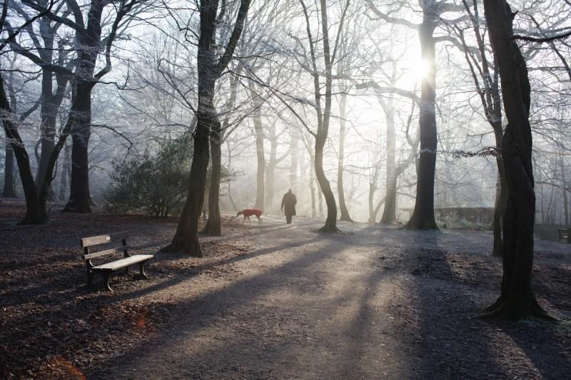 12.12.12 woods-8632