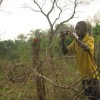 trip8_Lakun Obasoro thumbnail